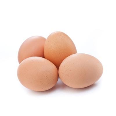 производство на яйца, Хайпро България